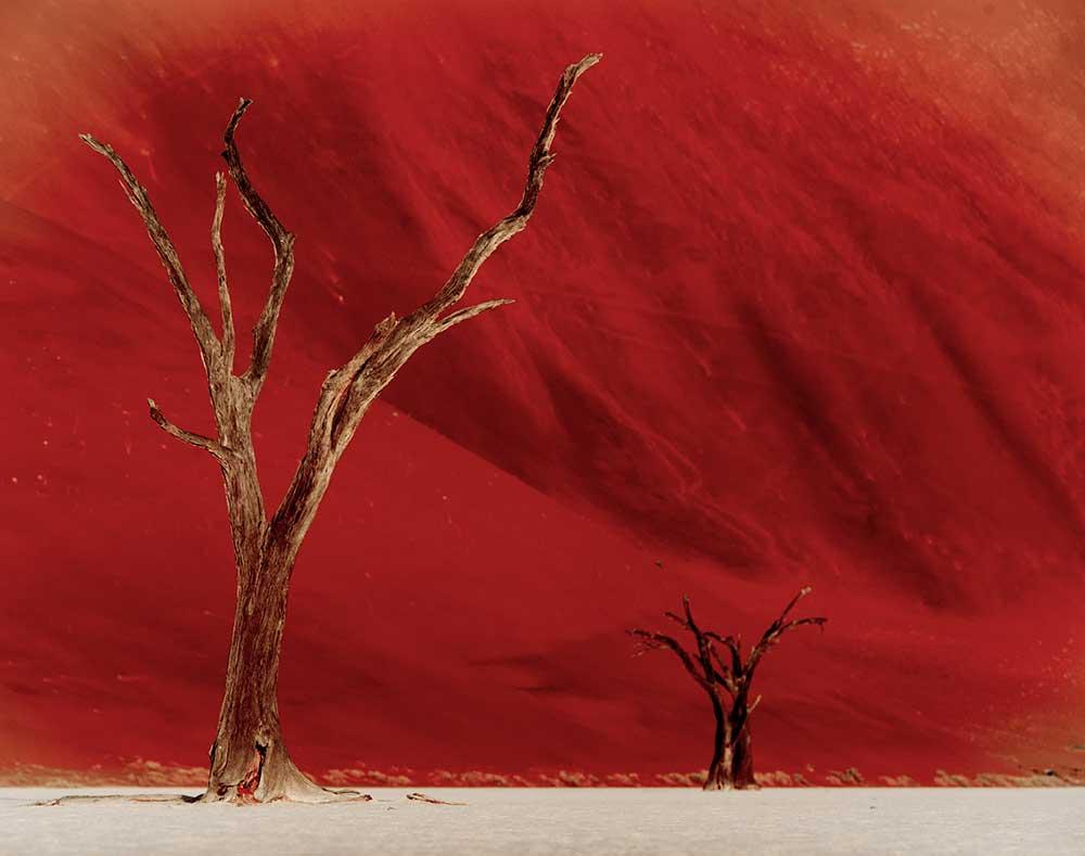 Deadvlei 2, Namibia