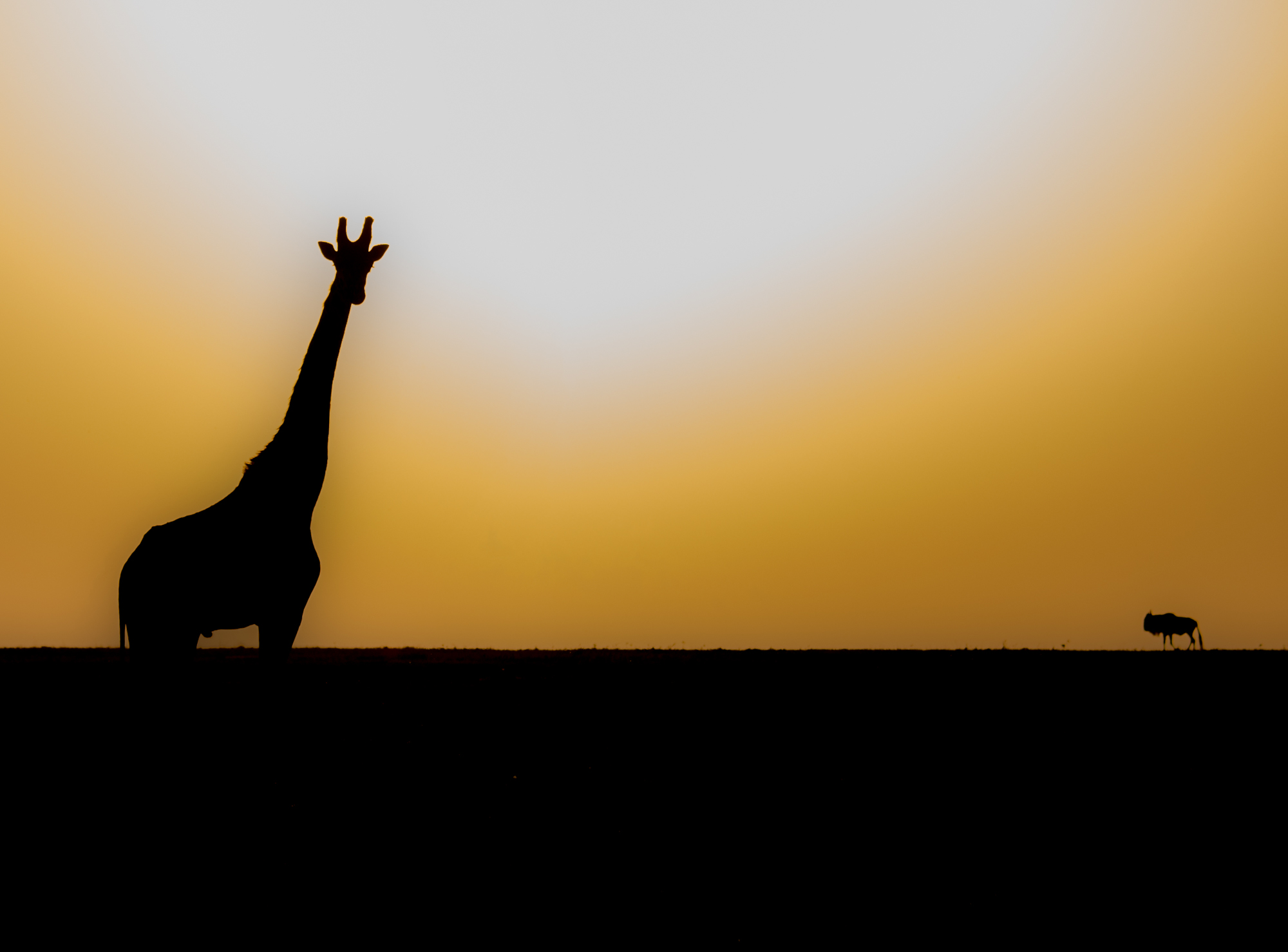 Setting Sun, Kenya